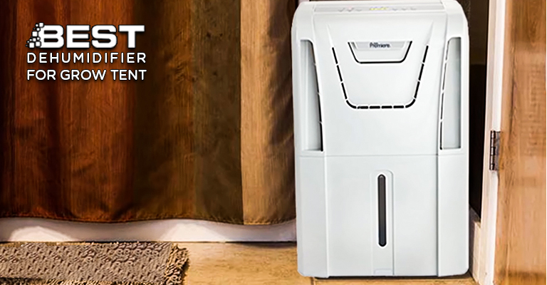 Best Dehumidifier for Grow Tent