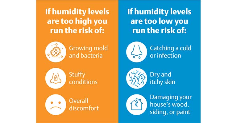 How Can I Reduce Humidity in My House